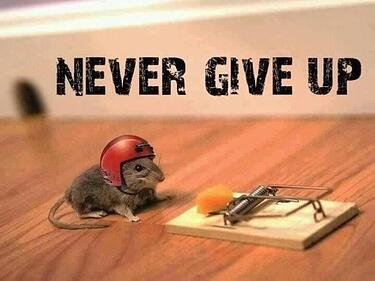 quotes-on-persistence1.jpg